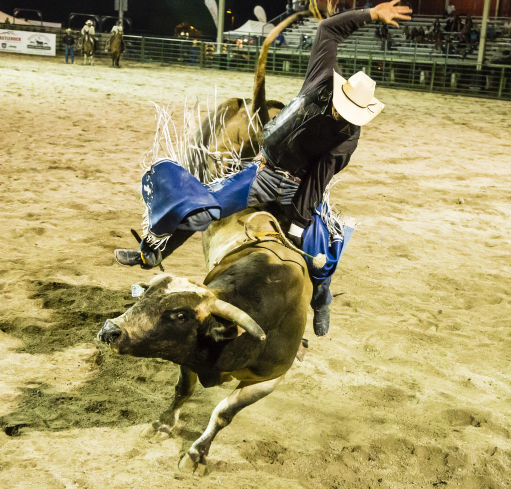 Jackson Hole Rodeo Where The West Is Still Wild